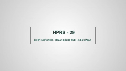HPRS 29