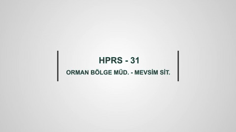HPRS 31